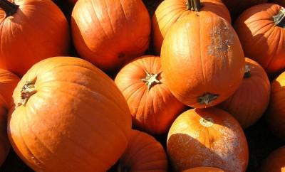 Bundeve - najhranjiviji jesenji plod
