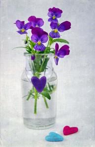 8 namirnica koje će pomoći vašem cveću da duže ostane sveže
