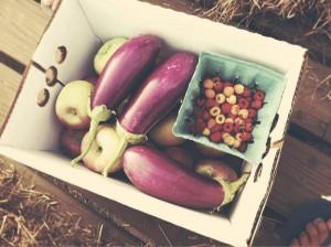 Zdrave jesenje super namirnice